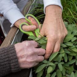 BRK Senioren-Wohn-und Pflegeheim Waldmünchen - Menschen helfen ist unser Auftrag